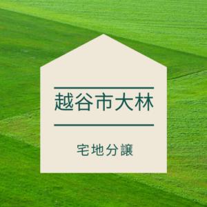 【売地】越谷市大林 123.34㎡ 1,490万円